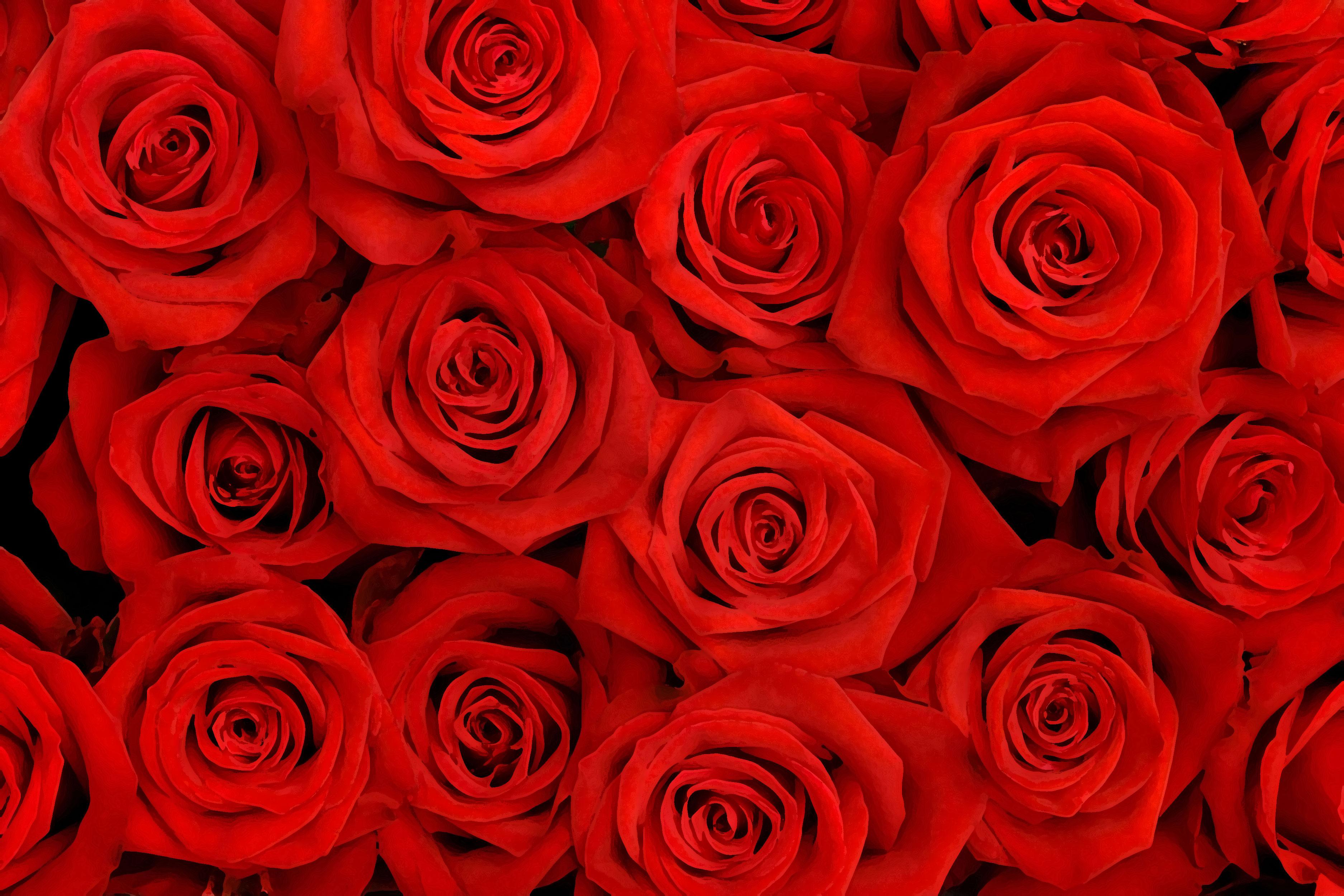 flower-back0991